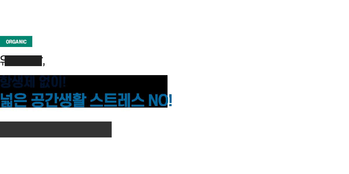 메인비쥬얼텍스트4